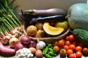 野菜、写真